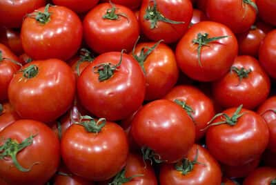 tomates-nancybuzz