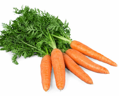 zanahoria-ok