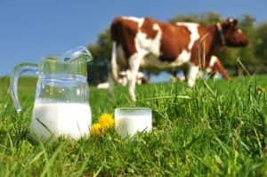 leche-vaca