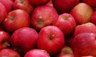 calorías manzana