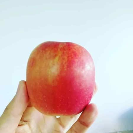 Comer manzana engorda